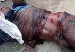 Tchad: Le manifestant Rombaye Emmanuel est tué par balles à N'Djamena avant l'investiture de Deby