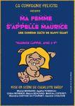 Une pièce de théâtre à Fougères