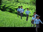 Pour le Népal