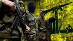 """Cuba y Hezbollah se reunieron en Líbano para """"celebrar"""" el acuerdo con Estados Unidos"""