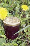 La Cramaillotte ou Gelée de Fleurs de Pissenlit