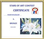Bronze Award - STARS OF ART CONTEST