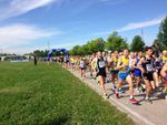 Alì Venice Running Day 2015. Sarà una grande festa per tutti, al Festival dello Sport, organizzato da Venicemarathon Club
