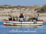 Aidkom Mabrouk!!