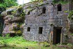 Roches et vestiges militaires en forêt de Vexaincourt  2/2