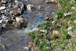 Sacs en plastiques en Algérie: Il faudrait traiter la maladie et non seulement les symptômes...