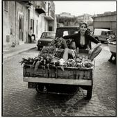 La Dolce Vita (Michel Perez), capturing heart of Sicilia, 1960 - Humour Actualités Citations et Images