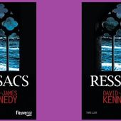 David-James Kennedy : Ressacs (Fleuve Éditions, 2014) - Le blog de Claude LE NOCHER