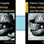 Patrick Caujolle : Beau temps pour les couleuvres (Éd.du Caïman, 2014) - Coup de cœur - - Le blog de Claude LE NOCHER