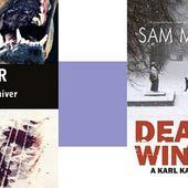 Sam Millar : Un sale hiver (Éd.Seuil, 2016) - Le blog de Claude LE NOCHER