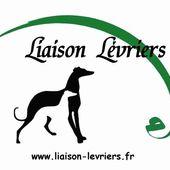 LIAISON LEVRIERS/DES MANTEAUX POUR L'ASSOCIATION PROPATAS A VALLADOLID