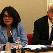 Interview de Nathalie Goulet, présidente de la commission d'enquête du Sénat sur l'organisation et les moyens de la lutte contre les réseaux djihadistes en France et en Europe - RP Defense