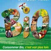 Douze règles toutes saisons pour bien s'alimenter et rester en bonne santé - Dans la Bulle de Manou
