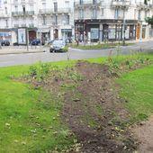 Concours de labours dans le centre ville ? - Bougez autrement à Blois - Bougez autrement dans le val de Loire