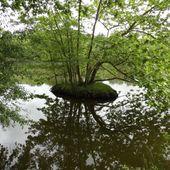 Lac des Carolins , Lescar ( Pyérénes-Atlantiques 64 ) AA - ONVQF.over-blog.com