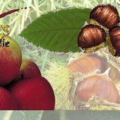 Semaine du Goût : Pommes-Châtaignes et Fromages - Maurs la Jolie