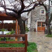 Déjeuner à La Cigale et la Fourchette - Virginie B le blog lifestyle