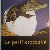 Le petit crocodile. Livre documentaire dès 4 ans. Mango jeunesse. -