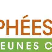 """""""Les Trophées Bio des jeunes Chefs""""* : les inscriptions sont ouvertes jusqu'au 15 janvier ! - Le blog de la bio"""