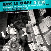 """Festival photographique 2015 """"Dans le champ d'iris"""""""