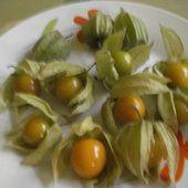 les physalis , cousines de nos tomates - Dame nature du jardin a la cuisine