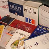 """Stop aux anglicismes - Campagne CSA """"Dites le en français"""""""