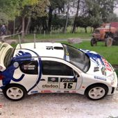 PEUGEOT 206 WRC 1999 TOUR DE CORSE REVELL 1/43 - car-collector