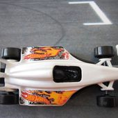 GP 2009 FORMULE 1 HOT WHEELS 1/64 - car-collector.net