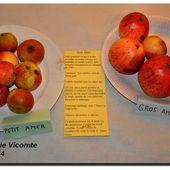 Gilles de Gouberville, les pommes et le cidre - Le Val de Saire vu par Ph L