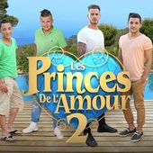 Bilan d'audience des Princes de l'amour saison 2. - LeBlogTvNews