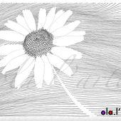 2 dessins de la nature - fleur et feuilles - ola.l'arte