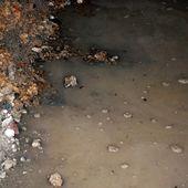 Le premier grand nettoyage du mur - Le blog de Séguié christian
