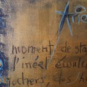 Ariel &amp&#x3B; Les danses nocturnes - Sylvia Plath - aller aux essentiels