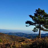 Col de Palomère et des panoramas - Autour de
