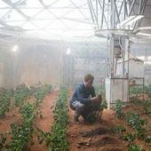 Der Marsianer - Ridley Scott - www.lomax-deckard.de