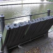 Rosa Luxemburg contre tous les nationalismes - Socialisme libertaire