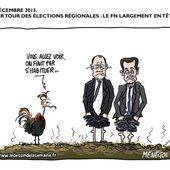 Humour Elections Régionales: les pieds dans la merde