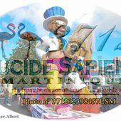 � Carnaval de Martinique 2017&#x3B; 10 bonnes raisons de venir vivre le carnaval en Martinique - Lucide Sapiens Martinique