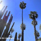 Le jardin Majorelle à Marrakech - Le coin des voyageurs
