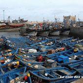 Sur le port d'Essaouira - Le coin des voyageurs