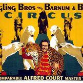 Emmanuel VARLE : Le cirque s'invite au 36. - Les Lectures de l'Oncle Paul