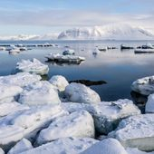 Sea level rise from Antarctic collapse may be slower than suggested: Impact on sea level of Antarctic ice sheet collapse