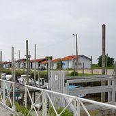 Un après-midi de printemps au Bassin d'Arcachon - Les Coups d'Œil de Brigitte