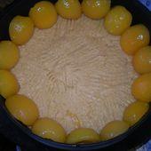 Bavarois abricots et fruits rouges . - la cuisine de l'espigaou