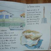 Carnet du Bassin d'Arcachon - 2 - Le blog de capucine-o2