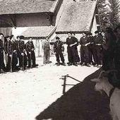 Les maquis des Bois Noirs (1ère partie) - Histoire et Généalogie