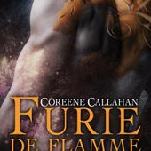 Tome 1 : Furie de Flamme - Ebook Passion