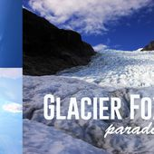 Fox Glacier, an incredible kingdom of ice! - mamzelle-bougeotte - voyages