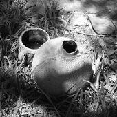 """"""" Dar, Douar, Dénia """", ou les possibles principes fondateurs d'une maâna écologique algérienne - Nouara Algérie (Environnement et Ecologie)"""