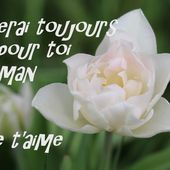 Poème illustré Maman comment te dire - Hélène SF